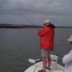 Redfish on the run