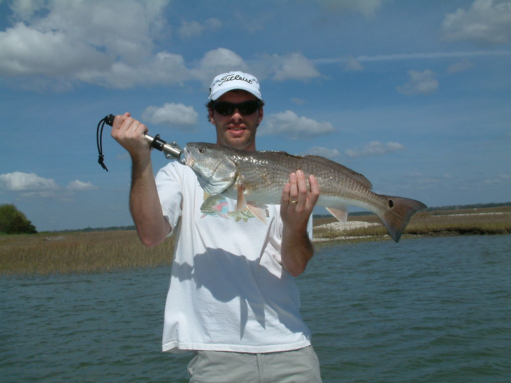 Isle of palms sc fishing guides headshaker inshore for Charleston inshore fishing charters